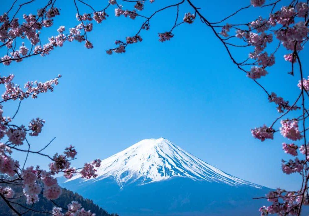 Semana Santa Japón, cerezos, primavera, sakura