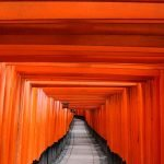 Viajar a Japón, Viaje Japón, Japón Exprés